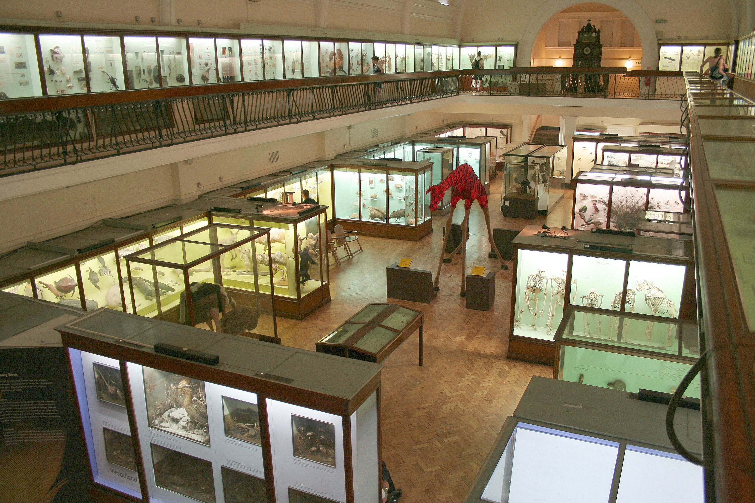 Horniman Museum London GowithOh
