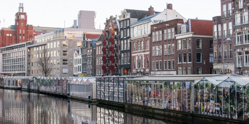 Amsterdam with Children - GowithOh