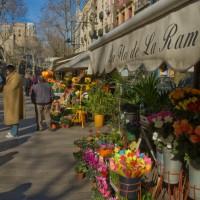 Barcelona winter