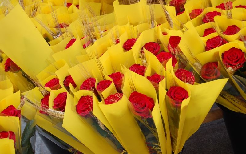 Roses for Sant Jordi - Gowithoh