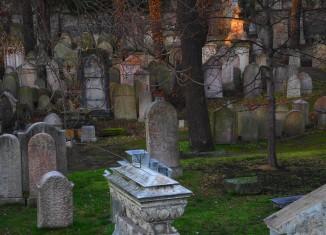 Jewish cemetery Prague - Gowithoh